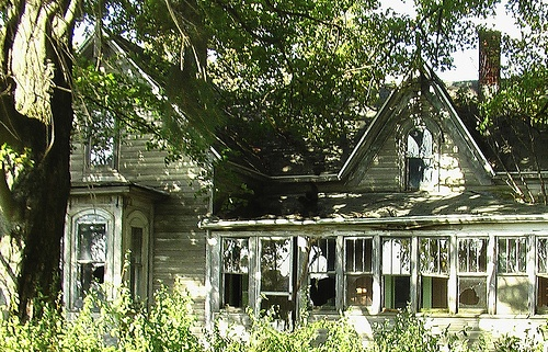 abandoned houses -