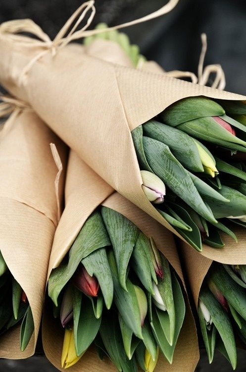 tulips wrapped in brown paper