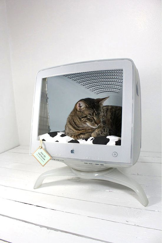 Recycled Apple Computer Pet Bed