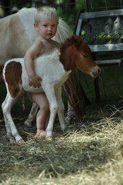 Awww baby and baby horse