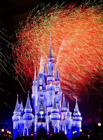 All of the resources you need to plan a Walt Disney World trip in one place!