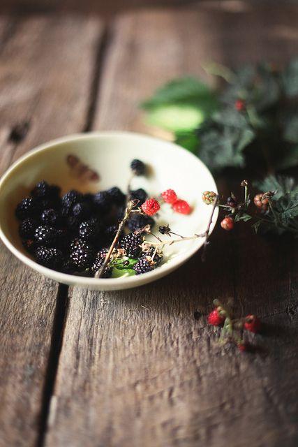 backyard blackberries by hannah * honey & jam, via Flickr
