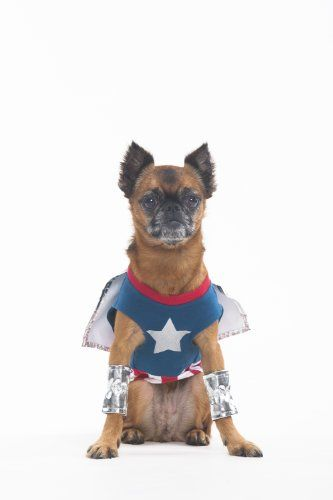Fashion Pet Halloween Superdog Boy Costume for « Pet Advertisings