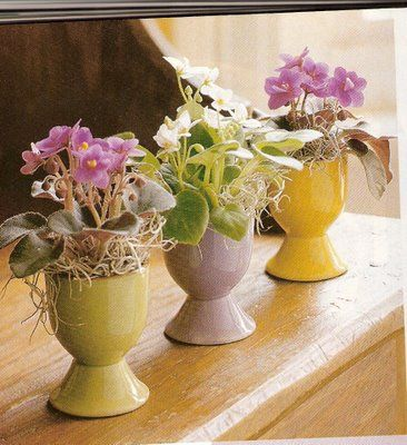 #Easter flowers in egg cups