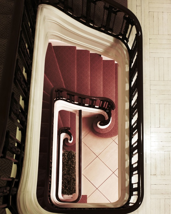 Staircase in the New York residence of Laura & Harry Slatkin, featuring carpet designed by Howard Slatkin from the Howard Slatkin Collection at Stark Carpet.   Interior design by Howard Slatkin Photograph by Douglas Friedman