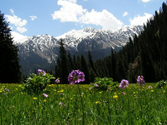 Kyrgyzstan - Travel Guide and Travel Info