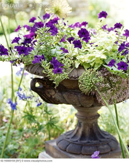 Flowers in an Antique Urn
