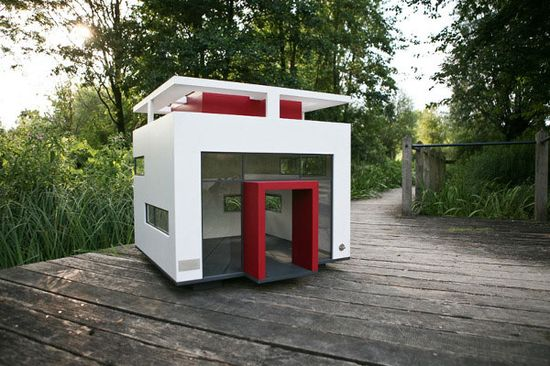 Luxury House Designs for your Dog