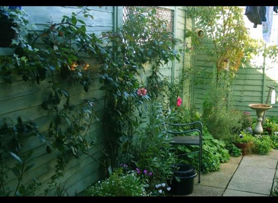 Courtyard garden, Interior Designers in Richmond, West London - Welcome to Liller Interior