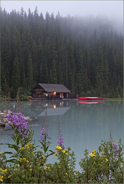 Cabin among the pines. Lake Louise, Banff National Park, Canada.