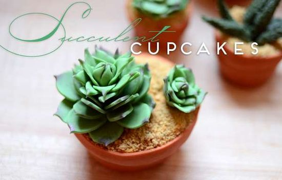 Potted Plant Confections -  These Succulent Cupcakes Will Keep Your Guests Guessing #cupcakes #cakes #bake #baking #food  yum, this seems healthy.