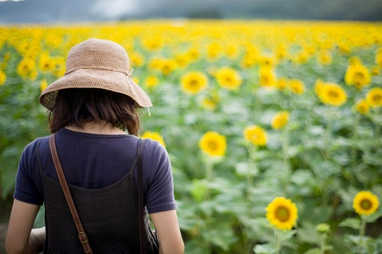 Beautiful sunflower field!!!!