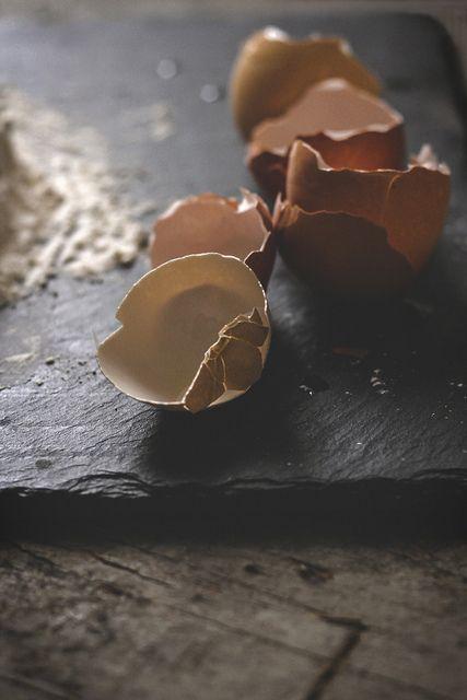 egg shells
