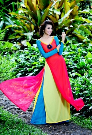 ao dai many colors