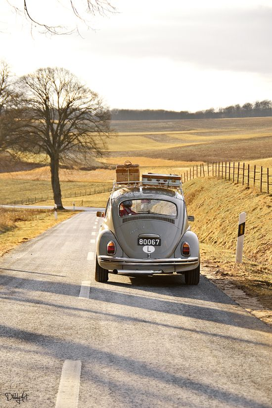 Beetle - open road