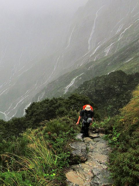 'Walking The Milford Track', 54 Km, 4 Days, South Island, New Zealand