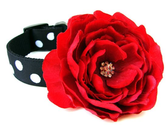 Dog Flower AddOn for Your Custom Dog Collar by Dogologie on Etsy, $7.00