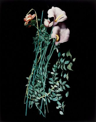 Roberta's Excorcism Flower Arrangements / Lynn Hershman (American, born 1941)