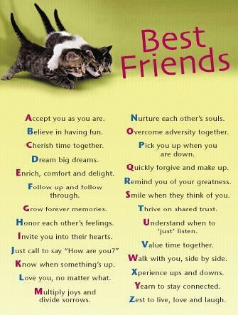 The BFF code!