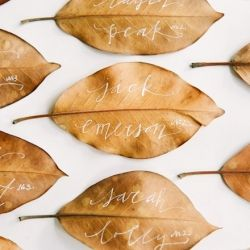 A fall wedding? Dry your local leaves then write on them for placecards. You could also dip the dried leaves in gold, silver or other color to match your wedding colors. There is a leaf that dries and leaves only the veins, just beautiful with a sprinkle of glitter. Infusion by PJ