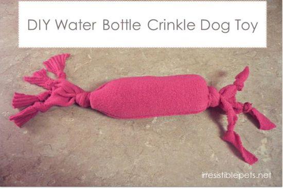 DIY Water Bottle Crinkle Toy DIY Pets DIY Crafts