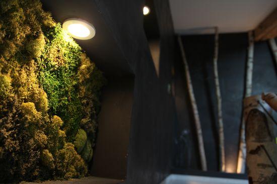 #déco #mur #végétal #bois #wood #home #design