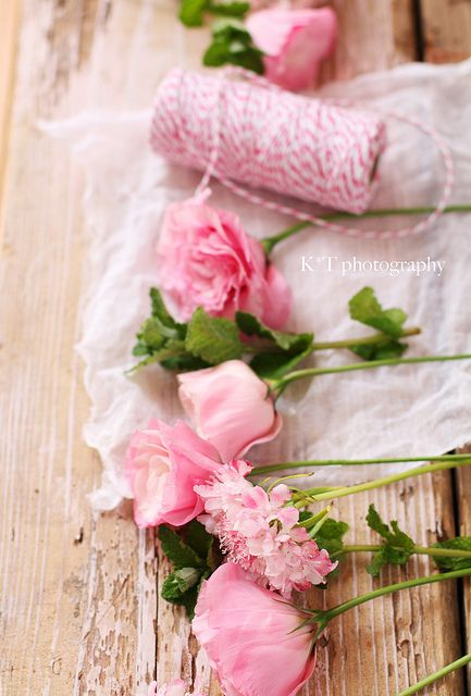 ???? pink petals and twine