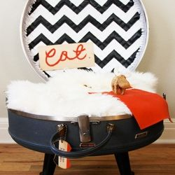 Create your own pet bed out of an old suitcase.