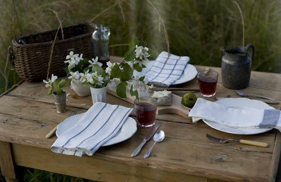 picnics...