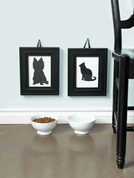 Living With Pets My Home Remodeling