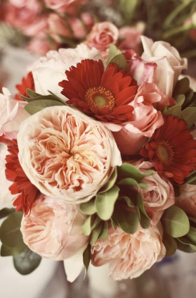 English Garden Roses, Gerber Daisies what girl doesn't want flowers on her wish list board?