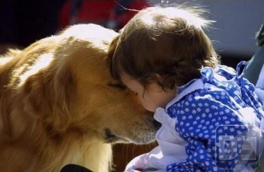 cute kids and animals