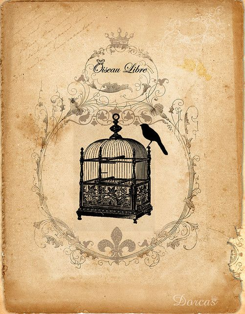 Free vintage images for collage. #art #birdcage #vintage