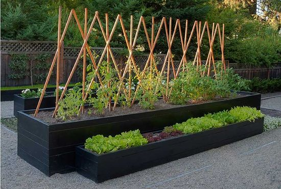 Raised beds and gravel