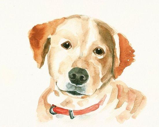 $35 custom watercolor portrait