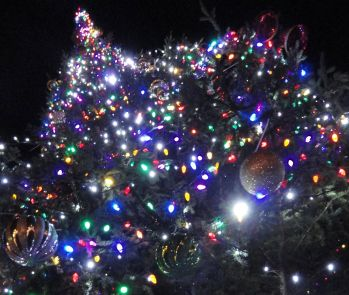 Somerville holiday events 2013