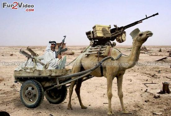 One Man Army Camel Gun Funny  [ More Funny People Pictures: www.fun2video.com... ]