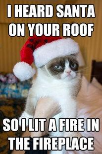 Le Grumpy Cat
