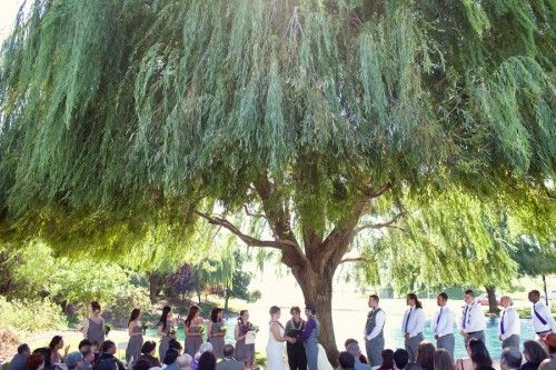 Willow tree ceremony