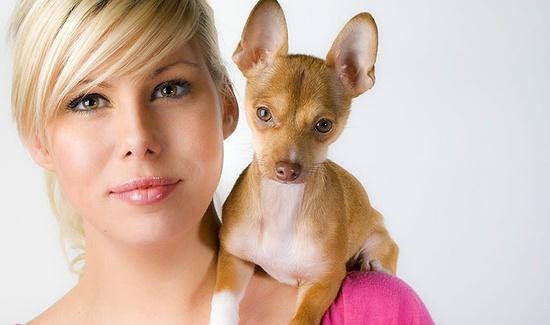 Best website for funny animal videos