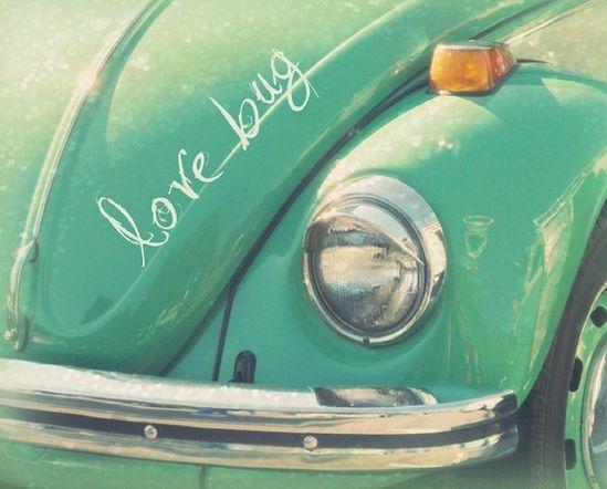 aqua blue love bug