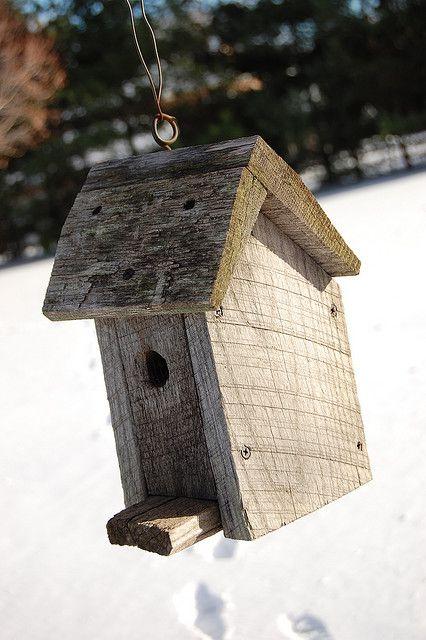 A Rustic Bird House