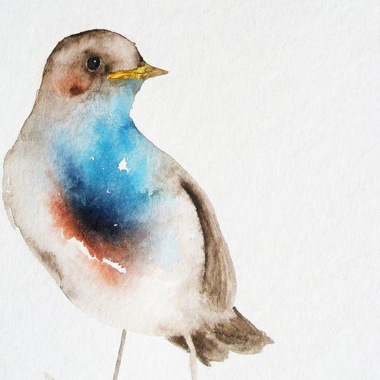 by dearpumpernickel #bird #watercolor