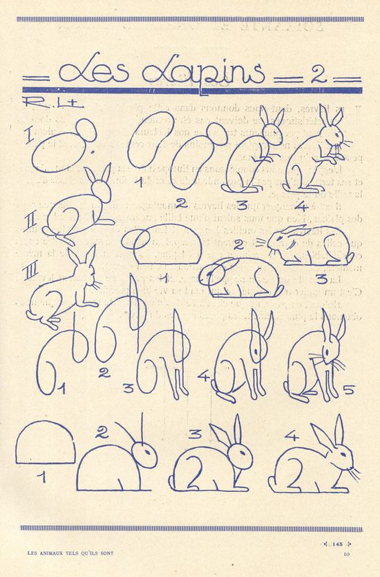 How to draw bunnies
