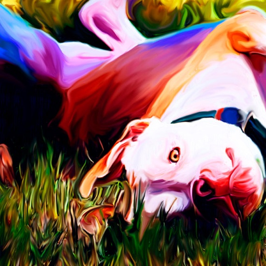Pit bull Painting..love these colors!