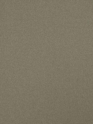 Fabricut Fabricut Riggwelter-Greystone $38.50 per yard #interiors #decor #holidaydecor