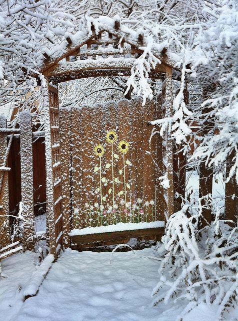 Garden gate in winter