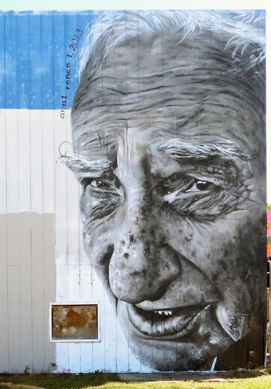 Anat Ronen's Murals, USA
