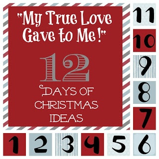 """My True Love Gave to Me!"" 12 days of Christmas Ideas for the Love of your Life!"