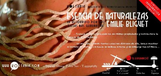 'Esencias de Naturalezas' by Emilie Bliguet at Koetania (Barcelona)  From April 11 until May 5, 2013    www.koetania.com